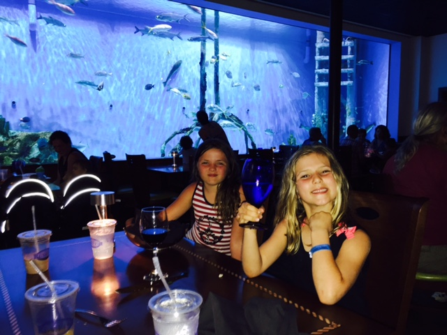 St. Petersburg: Have an amazing FL vacation in St. Pete! www.mytravelingkids.com